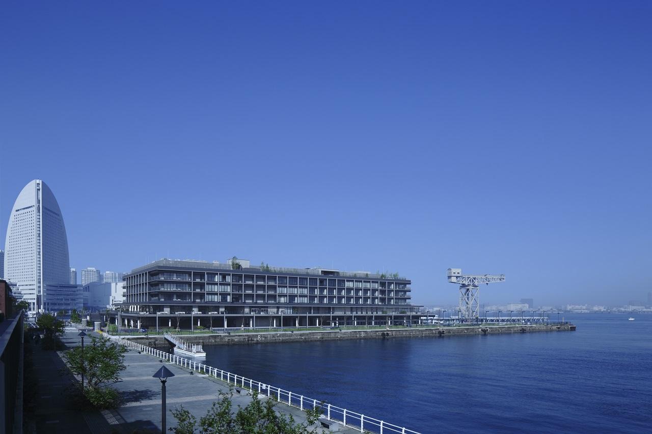 5 Things To Do at Yokohama Hammerhead