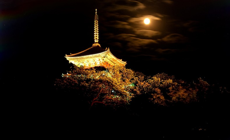 Sankeien Garden Harvest Moon Night Viewing 2018