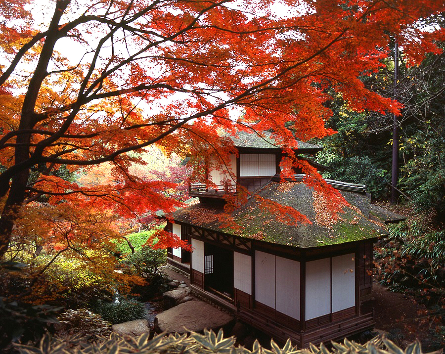 "Sankeien Garden  - Yokohama City Cultural Property ""Choshukaku"" and ""Yokobuean"" Open to the Public During Autumn 2019"