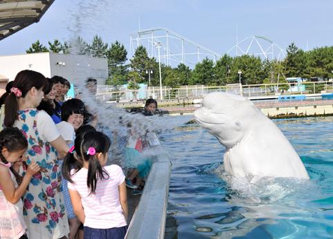 """Aquarium summer event """"Natsu-Para!"""""""