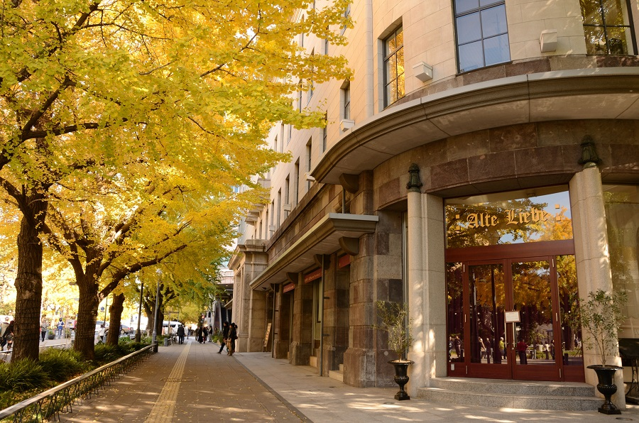 Feuillage d'automne de Yokohama 2018 - Top 10 des endroits à voir en automne -