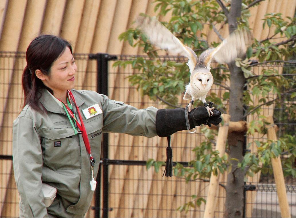 Jardins zoologiques de Yokohama « ZOORASIA »