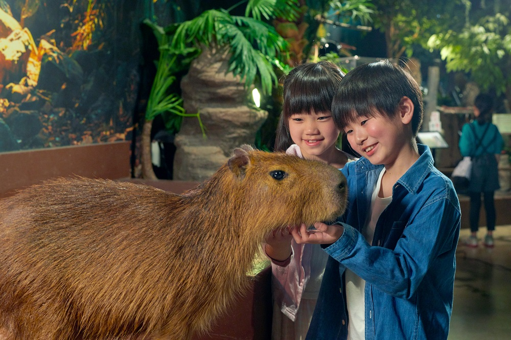 Orbi Yokohama - Indoor Wildlife Encounter -