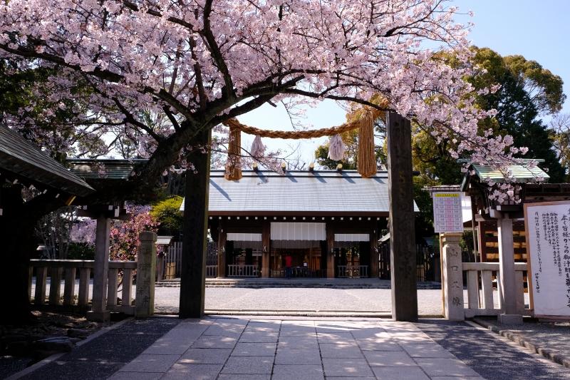 漫步在橫濱歷史性的神社與寺廟